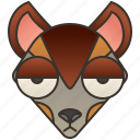 canine, dog, jackal, wild, wolf