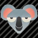 australia, eucalyptus, koala, marsupial, pouches icon