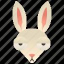 bunny, burrow, easter, hare, rabbit icon