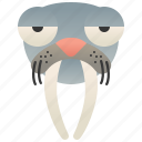 marine, ocean, sealife, tusks, walrus icon