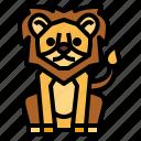 animal, lion, wildlife, zoo