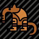 animal, anteater, wildlife, zoo