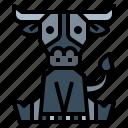 animal, buffalo, mammal, wildlife