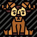 animal, goat, wildlife, zoo