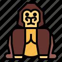 animal, gorilla, wildlife, zoo icon