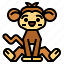 mammal, monkey, wildlife, zoo