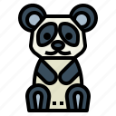 animal, bear, panda, wildlife