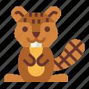beaver, wildlife, animal, mammal icon