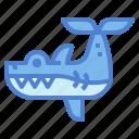 animal, aquarium, life, sea, shark