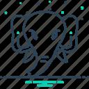 animal, elephant, face, head