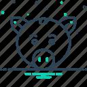 animal, face, pig, pork