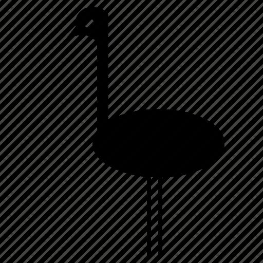 africa, birds, emu, forest, jungle, nature, wild icon