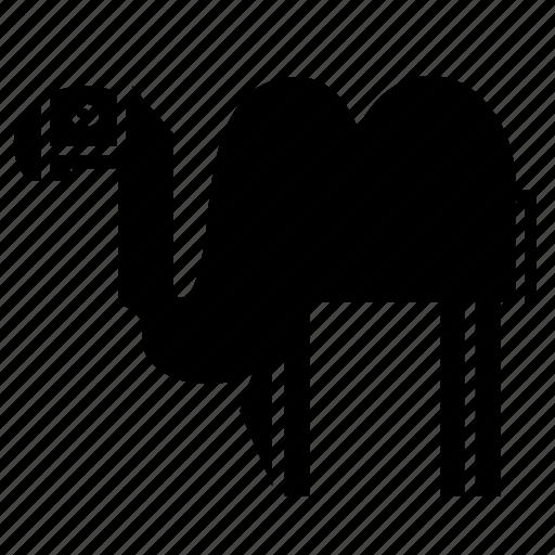 africa, animal, asia, camel, desert, nature, zoo icon