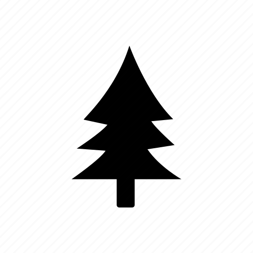 christmas, pine tree, plant, tree, winter icon