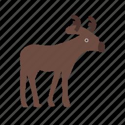 animal, decoration, deer, hornes, moose, reindeer, winter icon