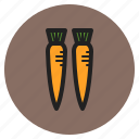 winter, vegetables, fruits, carrots, root