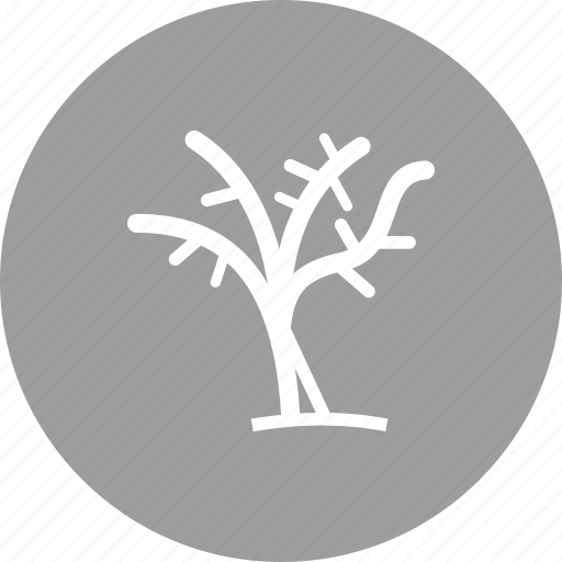 branch, dead, dry, leaves, plant, sky, tree icon