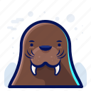 animal, cold, walrus, wildlife, winter icon