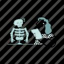 education, woman, girl, biology, skeleton