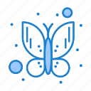 bug, butterfly, insect