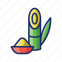 sugarcane, bamboo, plant