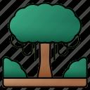 big, tree, forest, landscape, bush, botanical, yard