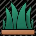 grass, leaves, farming, leaf, field, gardening, yard
