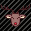 animal, christmas, deer, reindeer, winter, xmas