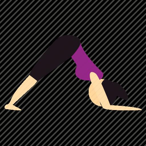 dolphin, meditation, pose, yoga icon