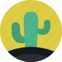 cactus, mexico, nature, plant, tree icon