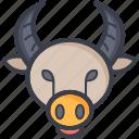astrology, pig, pig face, piggy, zodiac icon