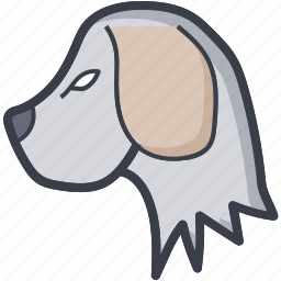border collie, collie, dog face, floppy ears, pet icon