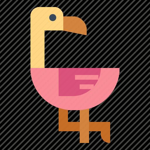 animal, bird, flamingo, zoo icon