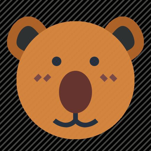 Australia, bear, koala, zoo icon - Download on Iconfinder