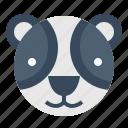 asian, bear, panda, zoo icon