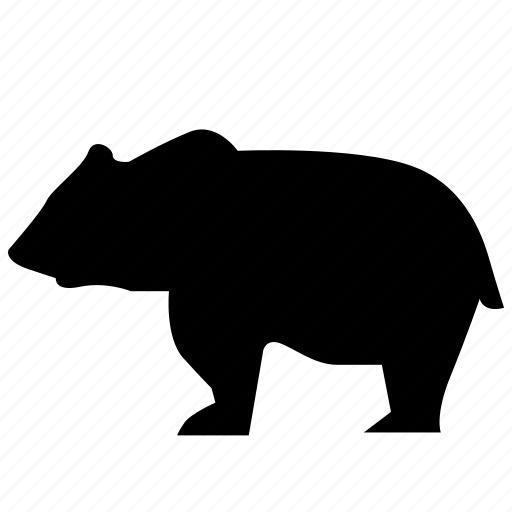 animal, bear, predator, zoo icon