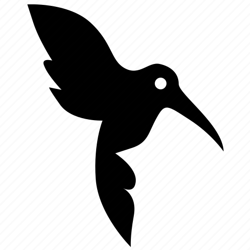 bird, colibri, daw, fly, hummingbird icon