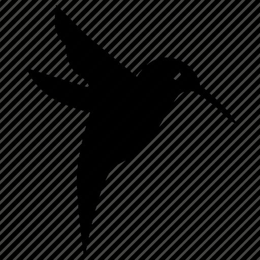 bird, fly, hummingbird, nightingale icon