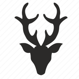 animal, deer, head, horns, wild icon