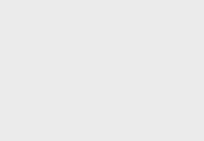 Animals Vol.1