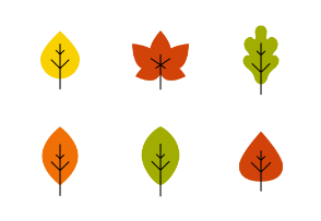 Autumn leaves colored