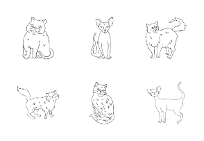 Cat Breeds in outline style
