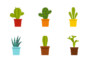 Different cactuses