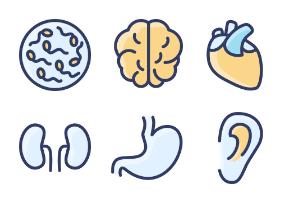 Filled Outline Health & Medical