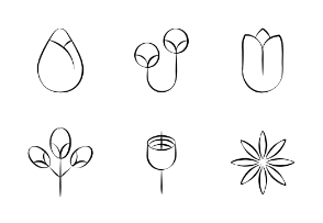 Flowers Hand Drawn Vector Set