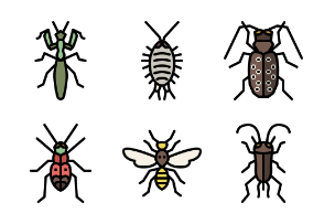 Insect Color Outline