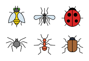 Small Insects Color