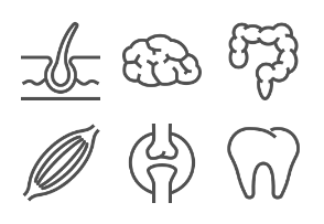 Lined organs
