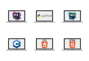Monitors with programming languages