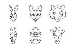 Outline:Animal